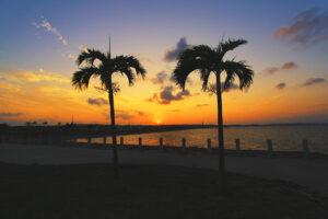 沖縄の夕陽とヤシの木と